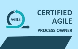 CERTIFIED AGILE PROCESS OWNER